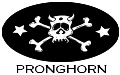 Pronghorn... Cowpunk-Band